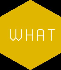 Hexagone_Altexa_Development_WHAT